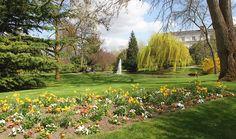 """Jardin de l'Hôtel de Ville d'Epernay, labellisé """"Jardin remarquable"""".  Imaginé au milieu du XIXe siècle pour agrémenter l'hôtel particulier de la famille Auban-Moët, il relève à la fois du style à la française et du parc paysager."""