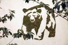 Graffiti en mousse végétale, bricolage, décoration maison