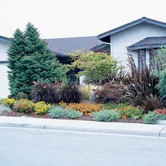 Create a Buffer!  Pack a small front yard with medium-size plants to help shield the home from street noise. Growing a variety of plants makes the yard look larger by giving your eye more textures, colors, and shapes to look at.