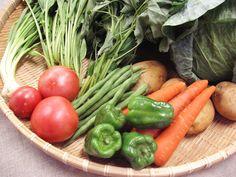 美味しく食べて一石二鳥。夏の旬野菜 - ぶどうの木|有機野菜や野菜セットの宅配・通販