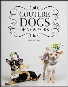 Wacky world of dog couture Helping a cause: A percentage of proceeds from the sale of Couture Dogs of New York, which is priced at $37.50, will benefit the Humane Society of New York - an animal shelter for dogs and cats