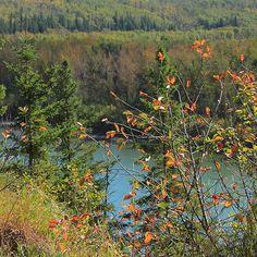 North Saskatchewan River in September