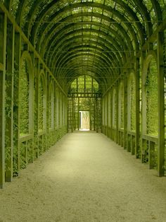 Green Lane 4 by ~svankouwen on deviantART...i really like this color would be good for a hallway