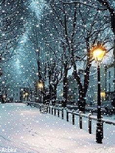 Winter Snow, Winter Time, Winter Christmas, Christmas Scenery, Outdoor Christmas, Winter Images, Winter Pictures, Winter Wallpaper, Winter Painting