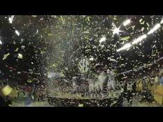 Auburn Tigers 2010 - We Salute You!