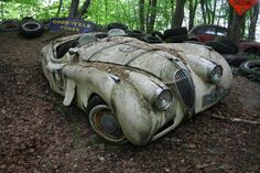 The Vintage Supercars Rotting away in a Forest (and that's how the owner wants it) By MessyNessy