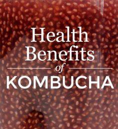 Benefits of Kombucha www.linkreaction.com.au