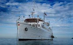 Falmouth, Nebraska, Sailing Ships, Meet, London, Tall Ships