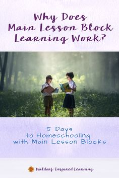 The Waldorf curriculum for any given year is divided into units of study called main lesson blocks. These block topics are the focus of learning for anywhere from three to six weeks. And now you may be wondering, why does main lesson block learning work? Is there any evidence that this approach is effective? Yes! #waldorfhomeschooling #mainlessonblocks Curriculum Planning, Homeschool Curriculum, Homeschooling, Waldorf Curriculum, Waldorf Education, Student Learning, Kids Learning, Inspired Learning, Thematic Units