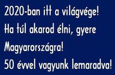 Funny Pins, Funny Memes, Jokes, Funny Photos, Haha, Have Fun, Hungary, Random, Humor