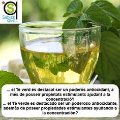 El #Te verde es destacado ser un poderoso antioxidante, además de poseer propiedades estimulantes ayudando a la concentración / El #te verd és destacat ser un poderós antioxidant, a més de posseir propietats estimulants ajudant a la concentració