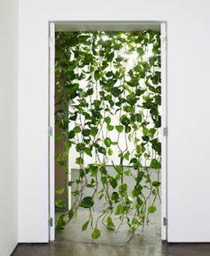 leaf curtain: would like diy instructions