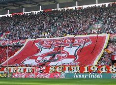 Koln supporters