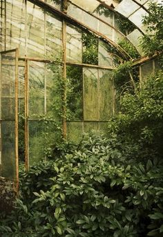 (via (11) Pin by Stephanie on Garden | Pinterest | Greenhouses, Green Houses and Nature)