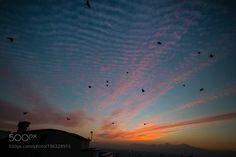 up&up by sinaamirmokri  http://ift.tt/2kfEGFI