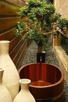 Love the feel of an outdoor bathroom.  Can be recreated with rocks, (fake) plants, fountain?