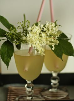 Must-Try Czech Summer Beverages Elderflower, Summer Drinks, Hurricane Glass, Food Hacks, Food Tips, Martini, Drinking, Planter Pots, Food And Drink
