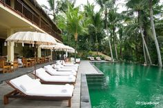 Komaneka at Rasa Sayang Ubud Hotels, Hotel Reviews, Great Deals, Trip Advisor, Bali, Relax, House Design, Space, Outdoor Decor