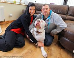 Pet crisis: Clare and Ceri Morgan cancelled their honeymoon trip to Las Vegas after discovering their dog Teeto needed treatment for cancer