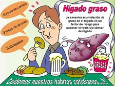 #HÍGADO GRASO