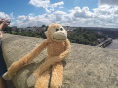 Lost at Tiergarten / Schlossgarten Schönbrunn Vienna on 14 Aug. 2016 by Ju: Little hanging monkey with just one leg. All Is Lost, Pet Toys, Vienna, Teddy Bear, Europe, Animals, Animaux, Animal, Animales