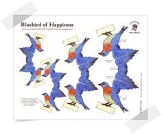 bluebird of happiness :: the toy maker
