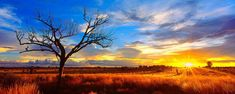 Mark Gray Fine Art Photography – Panoramic Landscape Photos, Australian Photography … - nizy for new year Best Landscape Photography, Australian Photography, Panoramic Photography, Landscape Photographers, Fine Art Photography, Photography Photos, Watercolor Landscape, Landscape Art, Landscape Paintings