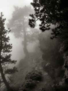 What lies beyond the mist?  Photos by Henery Jones