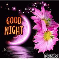 Good night Good Night, Gifs, Have A Good Night, Gifts
