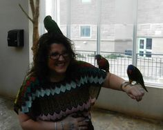 Attacked by Lorikeets