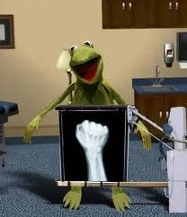 Funny, Funny Picture: X-Ray Kermit the Frog