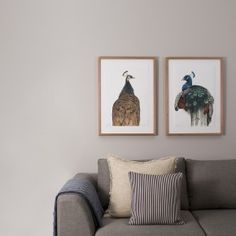 Neutral Lounge Room with Stampede Style Artwork