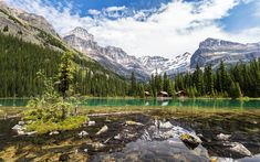 Download wallpapers Lake OHara, mountain lake, glacial lake, forest, mountains, Yoho National Park, Canadian Rocky Mountain, Canada