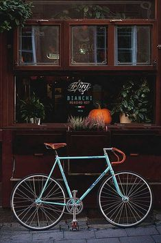 Fixed Gear Gallery :: Bianchi Rekord: