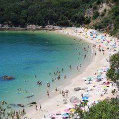 http://instagram.com/filipa.costa #beach #beachgirl #galapinhos #summer #beautiful #view #instagramers #instaview #nature #instasummer #verão #praia