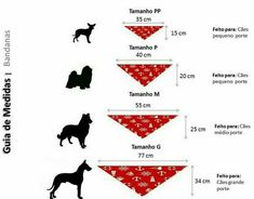 25 Premium Dog Clothes In Extra Extra Small Dog Clothes Notre Dame Dog Accesories, Pet Accessories, Dog Clothes Patterns, Sewing Patterns, Costume Chien, Diy Dog Collar, Dog Crafts, Dog Bows, Dog Pattern