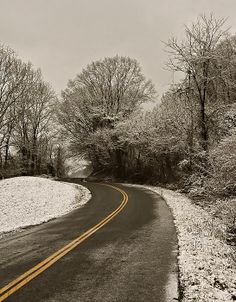 The Curved Road by Chris Flees