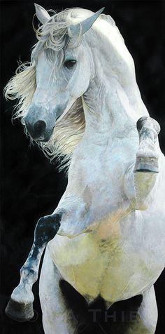 Beautiful rearing horse