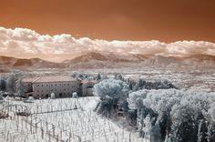 Great Infrared Photo |  Nikon D70 IR, 12-24mm f/4G ED-IF AF-S DX Zoom-Nikkor a 24mm, 1/250 f/8