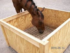 """""""Slow feed"""" hay box 