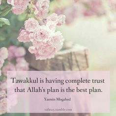 Tawakkul is having complete trust that Allah's plan is the best plan - Yasmin Mogahed. [by safina5.tumblr.com]