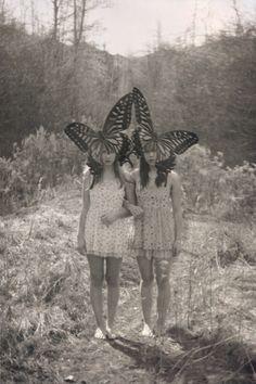https://flic.kr/p/bEUsL2 | New Butterflies | Old Caterpillers  The idea was of…