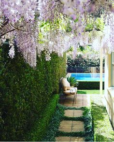 """1,054 Likes, 11 Comments - Master Landscapers Association (@lna_landscapers_association) on Instagram: """"Starting off the working week with this gorgeous entrance featuring Perfect hedges and pastel…"""""""