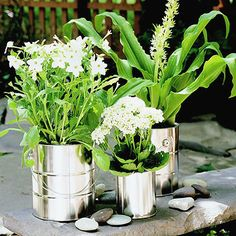 Paint Can Planters  Using a hammer and nail, punch several holes in the bottom of each can for drainage. Fill with potting soil and tuck in plants.