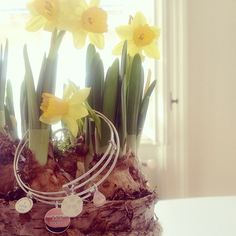 SPRINGTIME ☀️ #laviida #spring Spring Time, Glass Vase, Inspiration, Instagram, Home Decor, Biblical Inspiration, Decoration Home, Room Decor, Home Interior Design