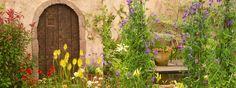Summer Fairytale - a beautiful garden from RHS Flower Show Tatton Park 2013.