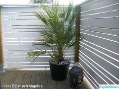 Side Gardens, Plank, Pergola, Lounge, Inspiration, Room, Ideas, Home Decor, Courtyards
