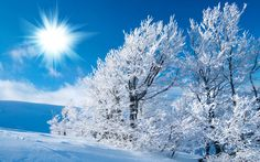 BIBLE STORIES ARE TRUE: SCRIPTURE(S) & PRAISE, JOB ASKED, HAS THE RAIN A FATHER? WHO GAVE BIRTH TO THE FROST IN HEAVEN?