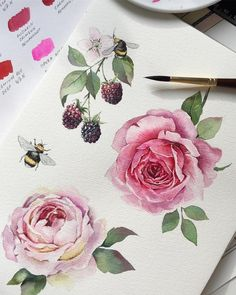 ideas for tattoo rose drawing watercolour Watercolor Illustration, Watercolour Painting, Watercolor Flowers, Painting & Drawing, Watercolors, Art Floral, Illustration Blume, Floral Illustrations, Rose Tattoos