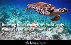 Enjoy the best Johann Wolfgang von Goethe Quotes at BrainyQuote. Quotations by Johann Wolfgang von Goethe, German Poet, Born August Share with your friends. Brainy Quotes, Great Quotes, Motivational Quotes, Inspirational Quotes, Quotes About Doing You, Famous Quotes About Life, Words Quotes, Life Quotes, Sayings